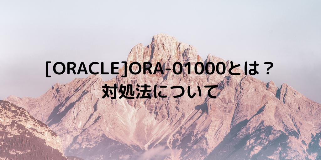 [ORACLE]ORA-01000とは? 対処法について